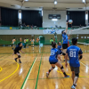 Udon Mixed Volleyballアイコン